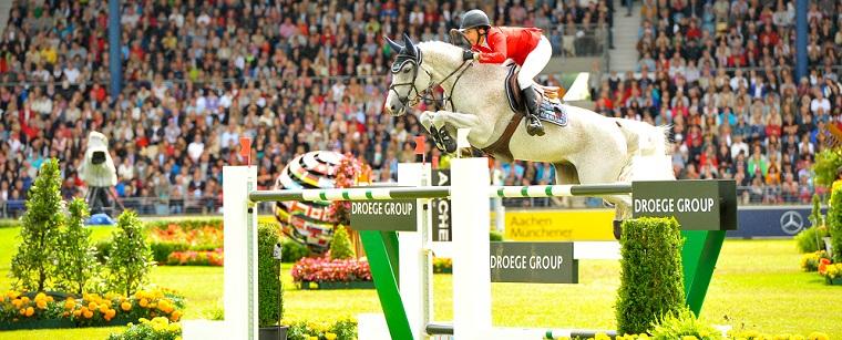 vital_horse_zawody2