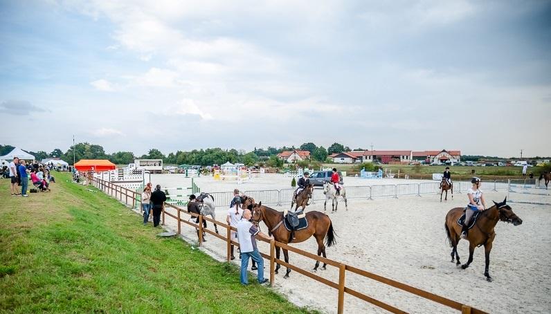 Vital_Horse_Arkadia_Zawody