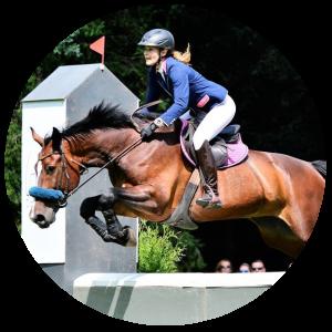 szkolenie_vital_horse_paulia